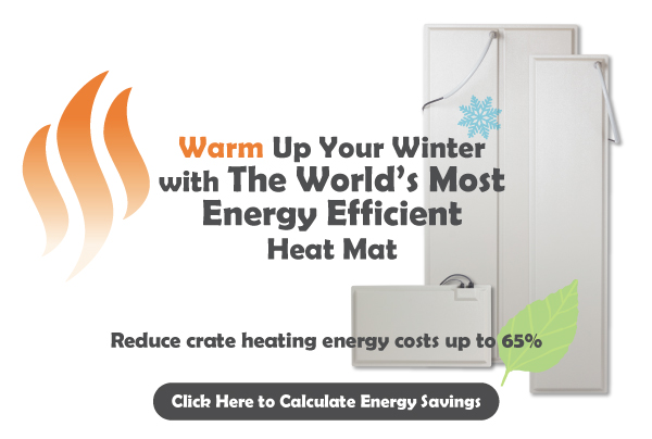 Warm Up You Winter with the World's Most Energy Efficient Heat Mat
